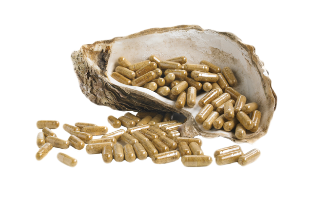 Pure oyster extract capsules in a shell