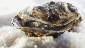Oyster extract is a natural source of zinc. Zinc is vital for reproductive health and male overall sexual health from erections to fertility even prostate health. Zinc deficiency can also result to lower sperm count and low testosterone level.
