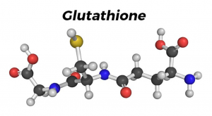 Glutathione, anti-oxidant, oyster extract, free radicals,